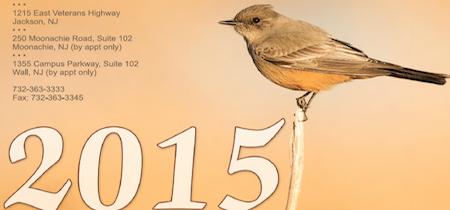 calendar 2015 copyright jackson nj